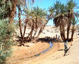 6 days circuit Mixed 4x4 and dromedary: Marrakech - Ouarzazate via Ait Ben Haddou - Dadés Gorges - Chegaga - Marrakesh