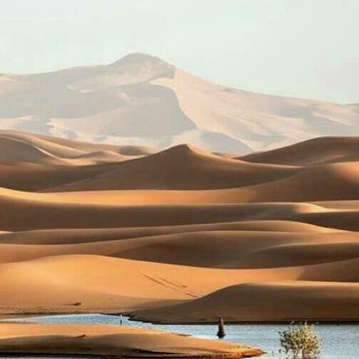 4-day tour from Marrakech to Merzouga night in Camp erg chabbi
